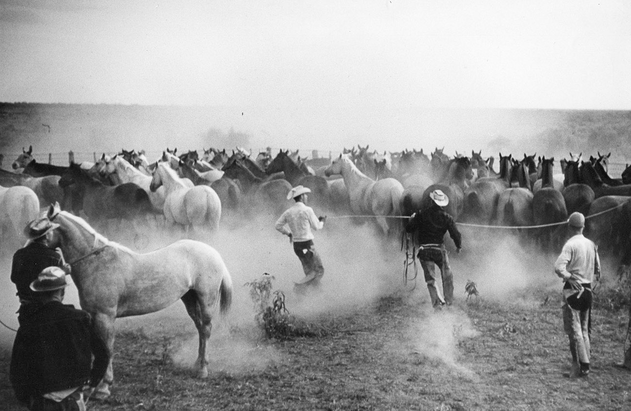 6666 Ranch History